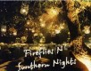 Fireflies N Southern Nights Thumbnail